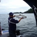 Salmon Fishing Adventures