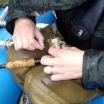 Campell River freshwater Salmon fishing
