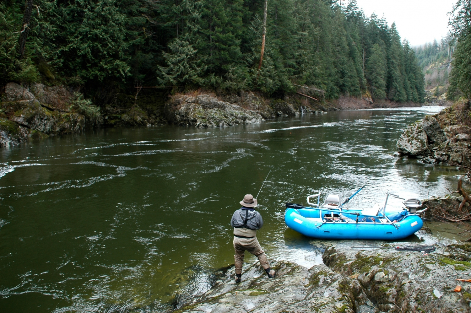 Guided Gold River, BC Steelhead Fishing charters. Gold ...