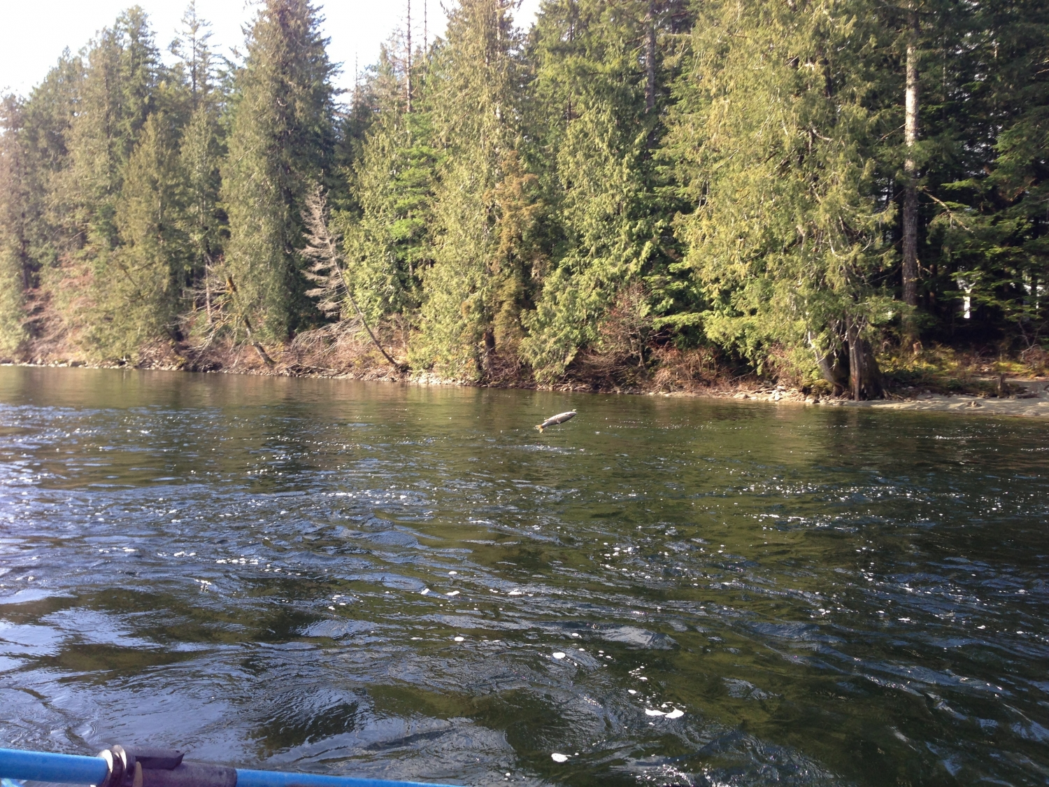 Dating in campbell river bc