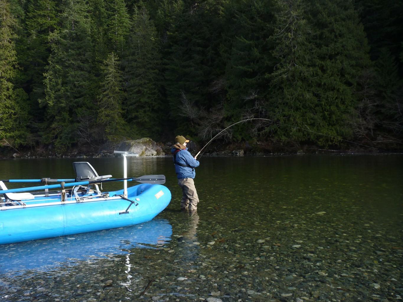 Gold River BC Steelhead Fishing