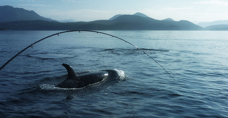 Fishing Charters in Campbell River BC